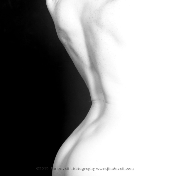 silhouette of a womans ba