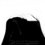 nude silhouette