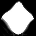 silhouette of legs in a diamond pattern